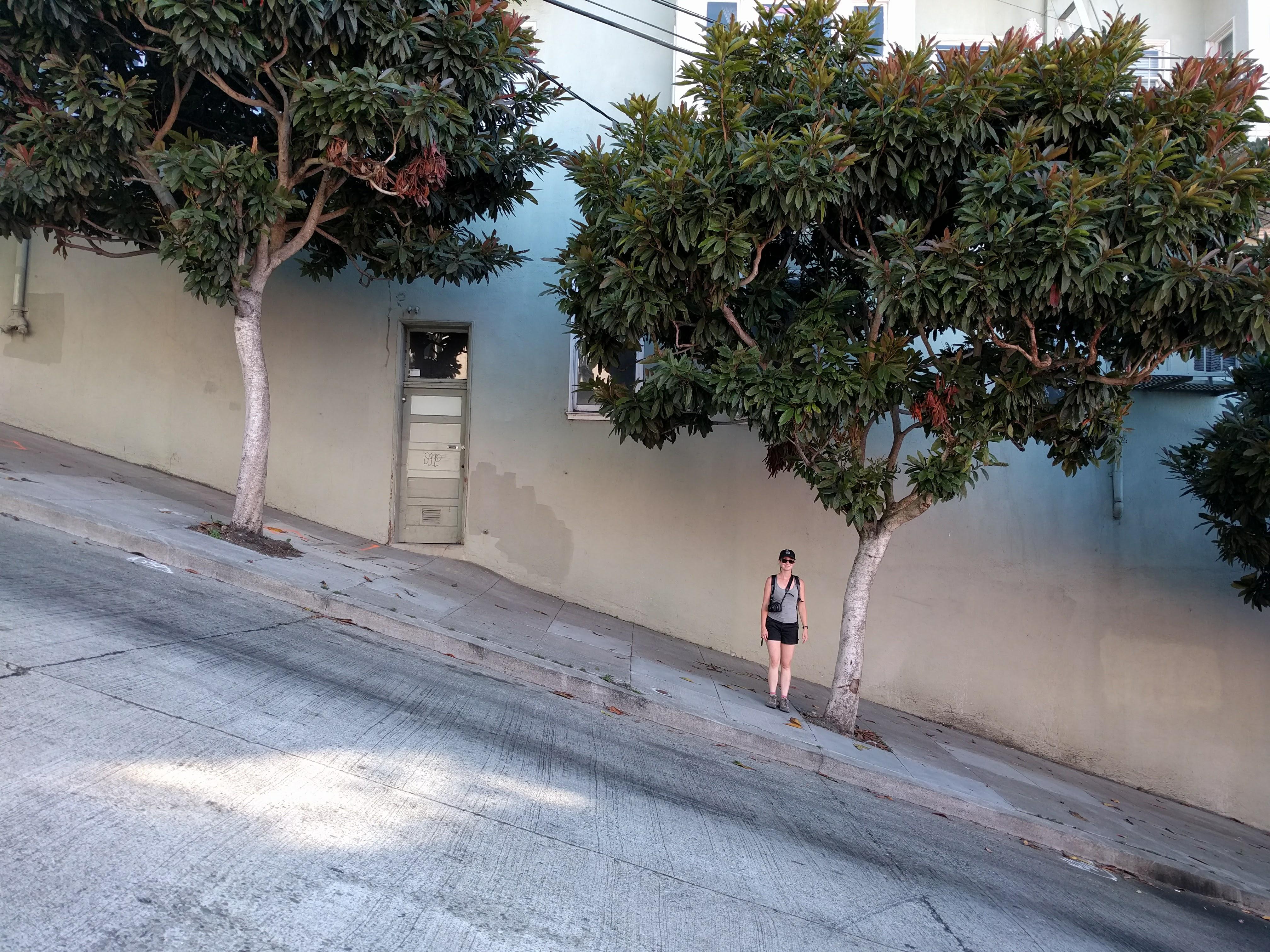 San_Francisco_pentes